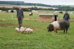 Chris and Tony - who manage the pigs